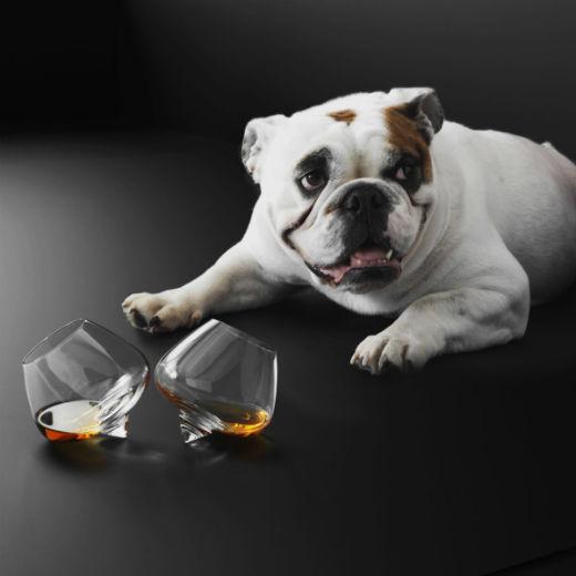 Pahare Cognac fara picior 6